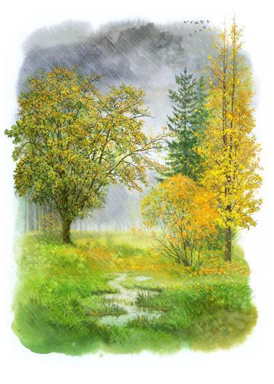 autumn Papel Acuarela Paisaje