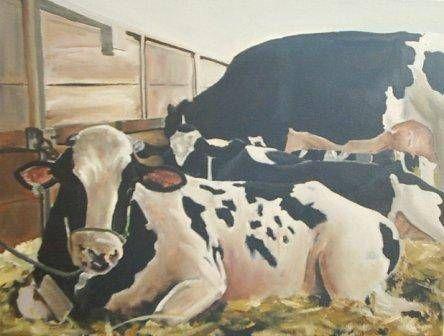 Vacas holandesas augusto machado animais - Cuadros de vacas ...