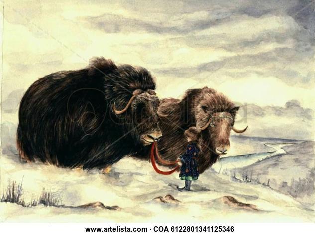 Bueyes en invierno Animales Acuarela Papel