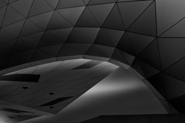 Musée des Confluences Blanco y Negro (Digital) Arquitectura e interiorismo