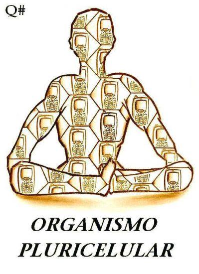ORGANISMO PLURICELULAR Lápiz