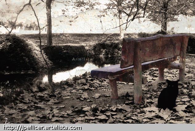 Otra forma de decir adiós Naturaleza Color (Digital)