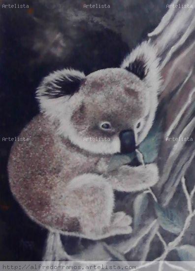 Koala Óleo Animales Lienzo