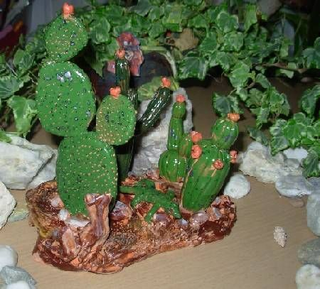 Panorama desertico -Cactus
