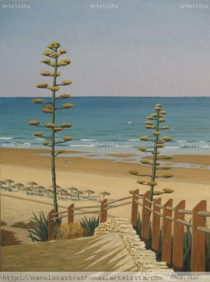 Novo sancti petri - playa
