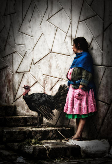 Mrs. Turkey Color (Digital) Photojournalism and Documentary