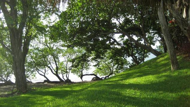 Golfo de papagayo 2 Arquitectura e interiorismo Blanco y Negro (Digital)