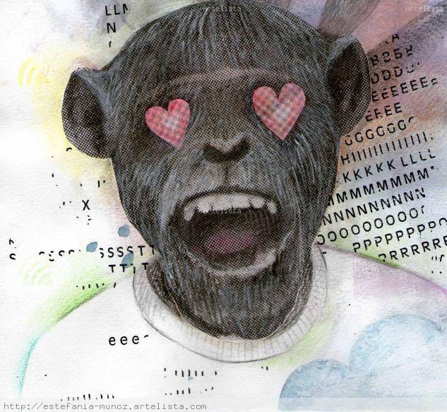 wifi monkey
