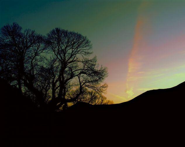Amanecer en invierno Naturaleza Color (Digital)