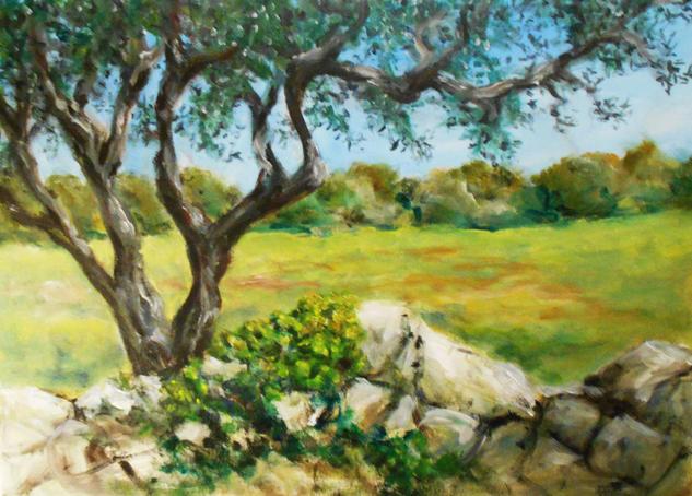 Olive tree Paisaje Acrílico Lienzo