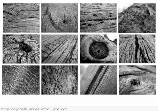 Texturas Arquitectura e interiorismo Blanco y Negro (Digital)