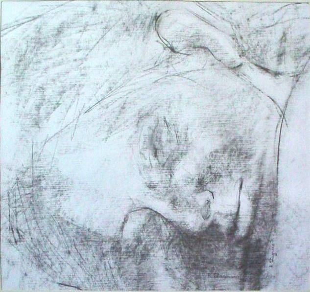 368-rostro m pequeña, lìnea ,dormida,B.N. Carboncillo