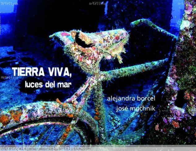Tierra Viva Luces del Mar Naturaleza Color (Digital)