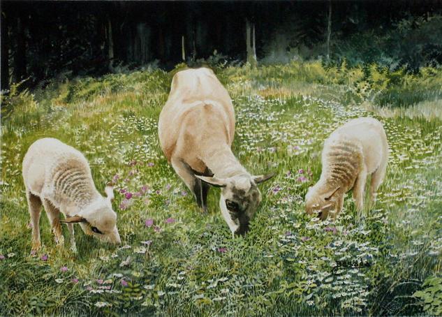 A NAI E OS AÑOS Papel Acuarela Animales