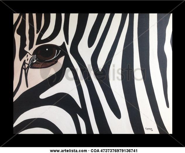 Mirada De zebra Lienzo Acrílico Animales