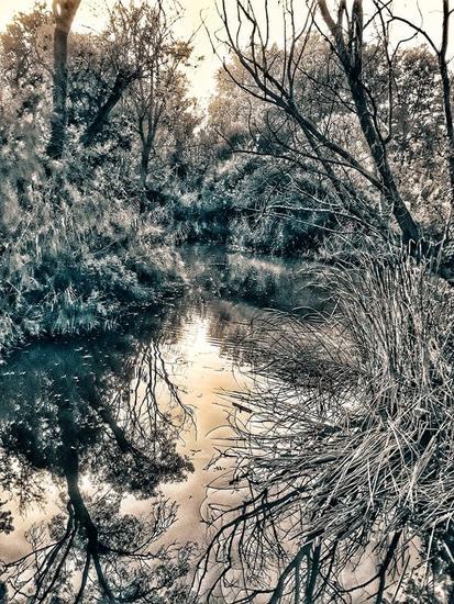 Paisaje reflejado Naturaleza Color (Digital)