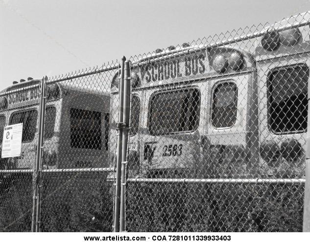 School Bus Otras temáticas Blanco y Negro (Digital)