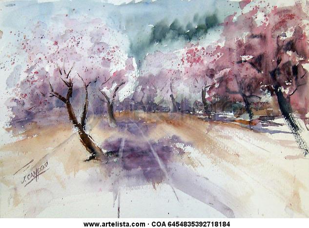 Almendros en flor Paper Watercolour Landscaping