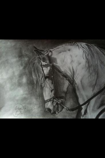 caballo Canvas Oil Landscaping