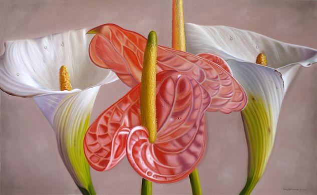 Calas y Anturias Óleo Lienzo Floral