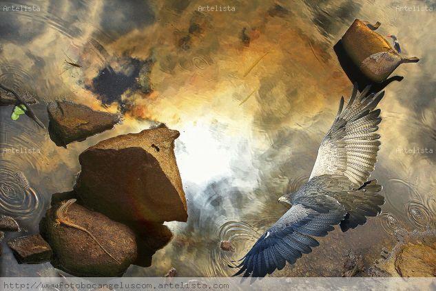 Vientos desde el sur real Color (Digital) Conceptual/Abstracto