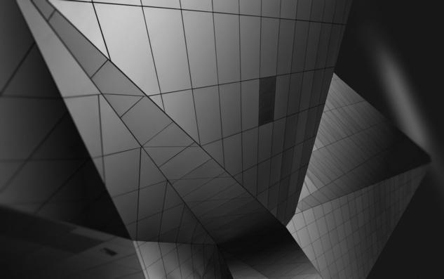 Musée des Confluences 2 Blanco y Negro (Digital) Arquitectura e interiorismo