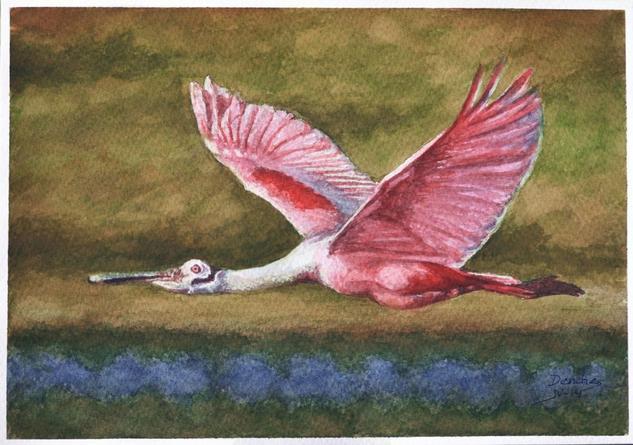 Aves Cartulina Acuarela Animales
