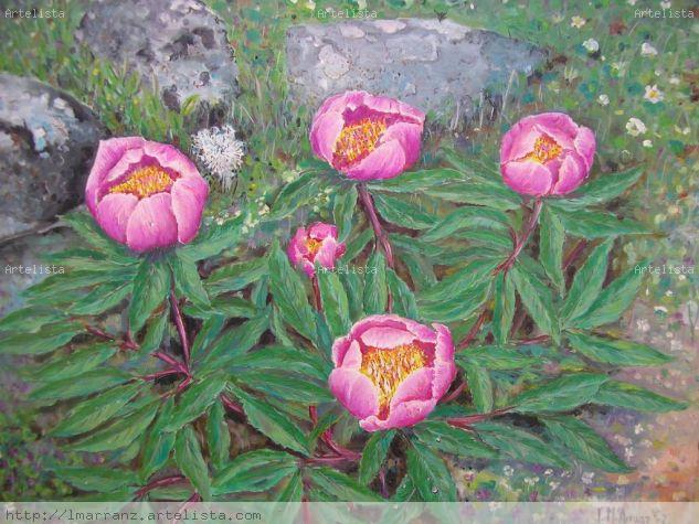 flor de alejandria
