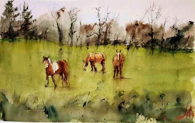 caballos gallegos