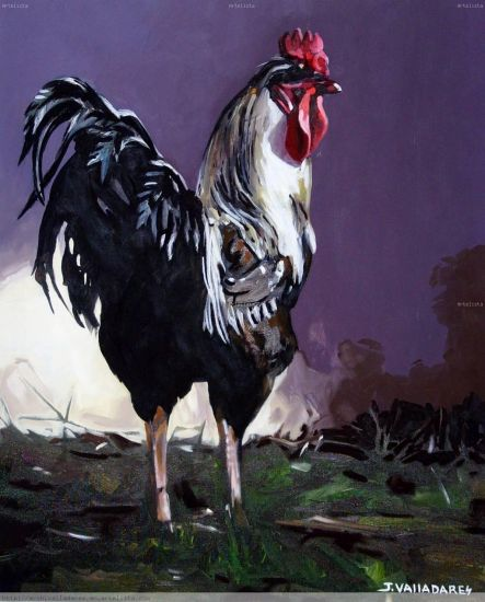 Rooster I Oil Canvas Animals
