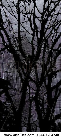 Árboles entre el cielo Paisaje Rotulador Lienzo