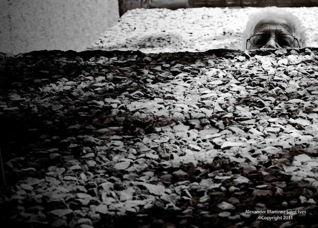 Entre nada Arquitectura e interiorismo Blanco y Negro (Digital)