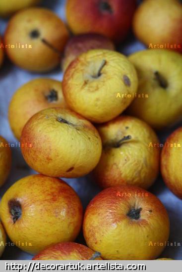 Old Apples Color (Digital) Still lifes