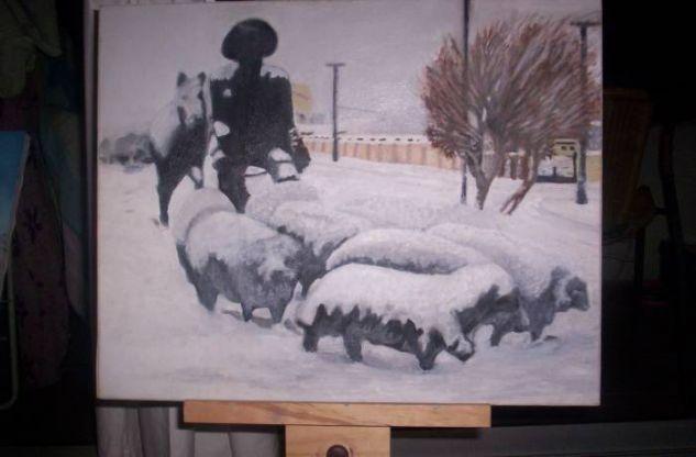 ovejero de magallanes