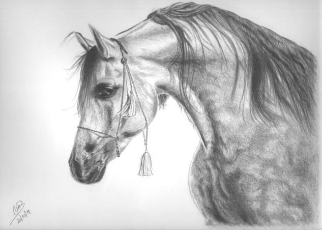 Caballo árabe Lápiz