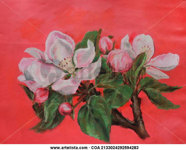 Flor del manzano Papel Pastel Floral