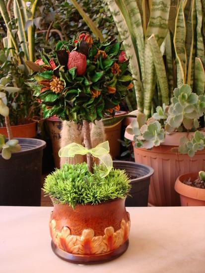 Almendro Otros Industrial Floral