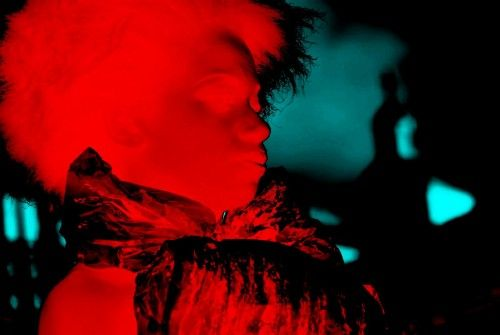 Red Retrato Color (Digital)