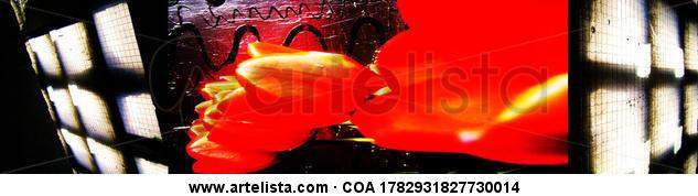 GRACIAS AMOR Color (Digital) Conceptual/Abstracto