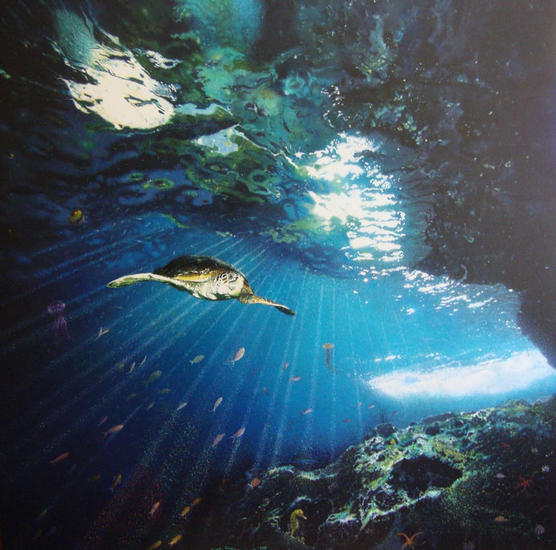 ''Eclipses bajo el mar'' Marina Óleo Lienzo