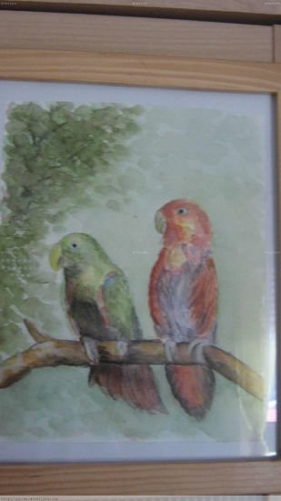 Pássaros Acuarela Tabla Paisaje