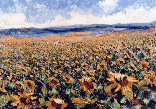 Girasoles serranos Canvas Oil Floral Painting