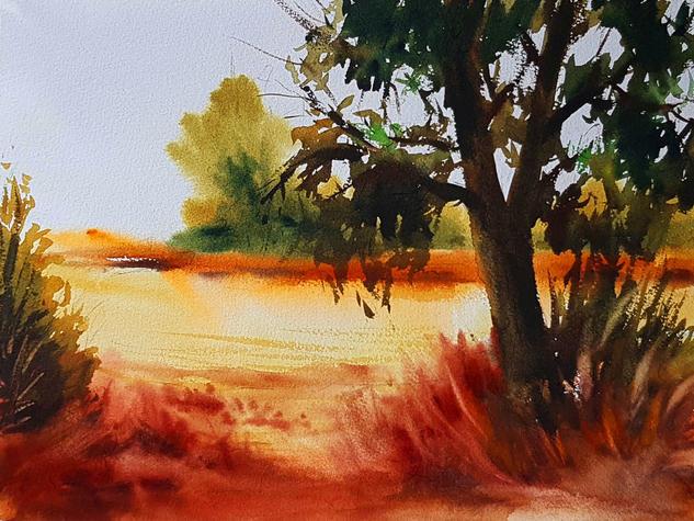 CAMPOS DE NUEVO BAZTAN 1 Landscaping Watercolour Paper