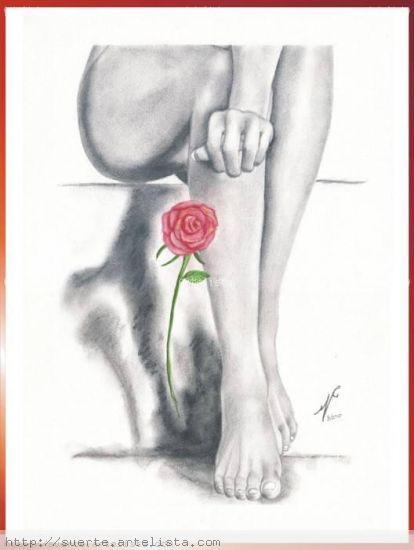 La Rosa Lienzo Paisaje