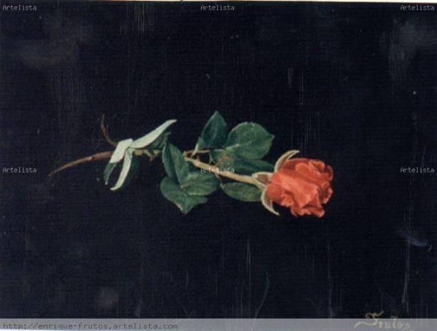 Rosa Lienzo Óleo Floral