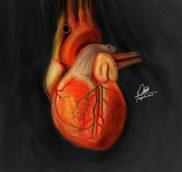 Corazón Figura Acrílico Tela
