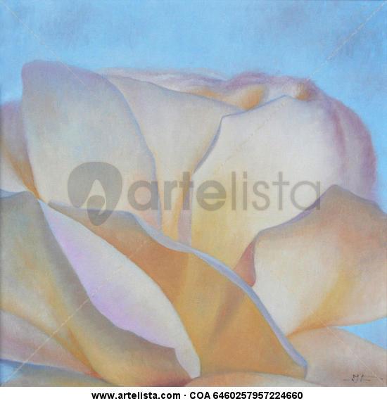 rosa blanca-1