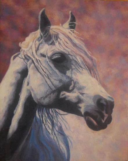 portret araba 2 Lienzo Animales Óleo