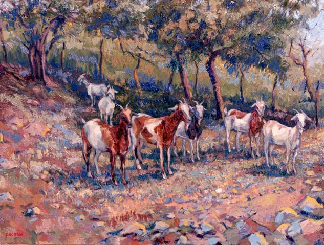 Cabras en el corral Canvas Oil Animals
