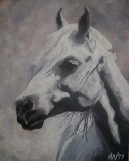 portret araba Lienzo Animales Óleo